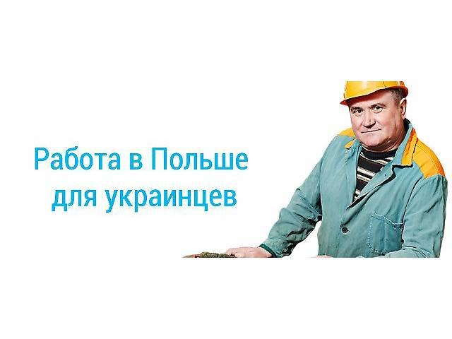 купить бу Виза в Польшу. Приглашения, страховки, анкеты. Трудоустройство!  в Украине