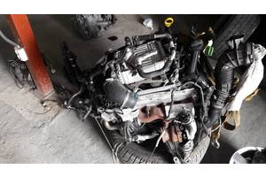 б/у Блоки двигателя Volkswagen T6 (Transporter)