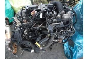 б/у Двигатели Peugeot 305