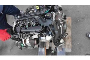 Двигатель Ford Focus Sedan Б/У