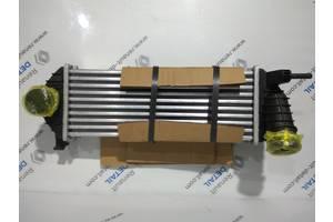 Новые Радиаторы интеркуллера Renault Kangoo