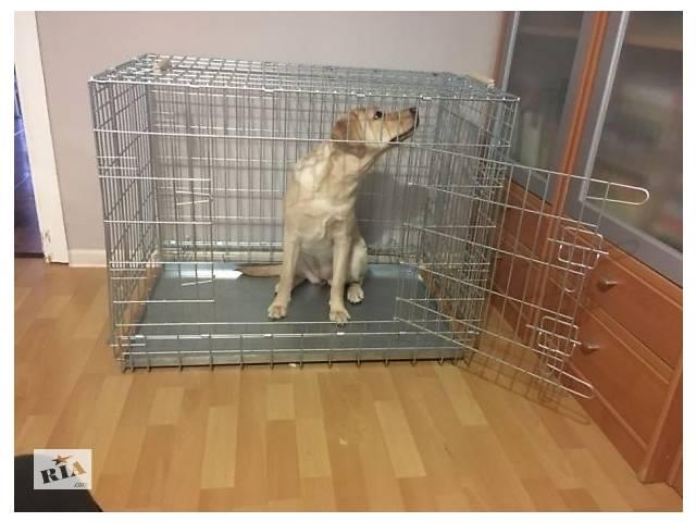 Клетка вольер для собак ВОЛК-1, №5, 92х63х72h см усиленная 5мм- объявление о продаже  в Киеве