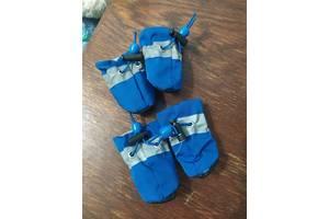 Обувь (пинетки, сапожки) для собак маленьких пород