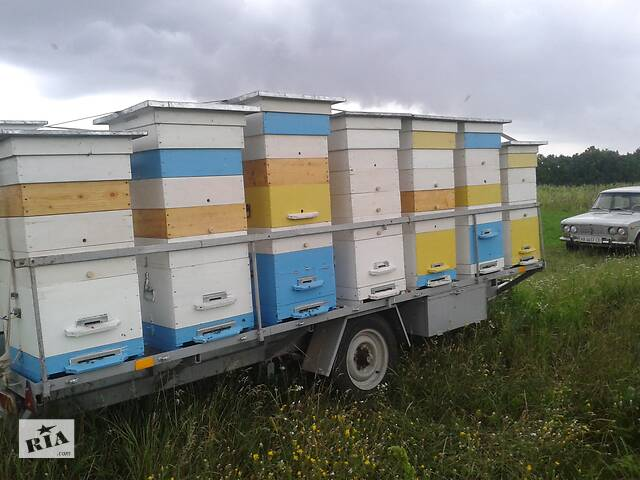 Прицеп для перевезення пасіки та бджолинні сімїі - объявление о продаже  в Вінниці