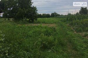 Продается земельный участок 50 соток в Закарпатской области