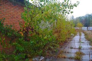 Куплю землю комерційного призначення на Київській без посередників