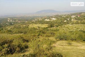 Куплю землю комерційного призначення в Виноградові без посередників
