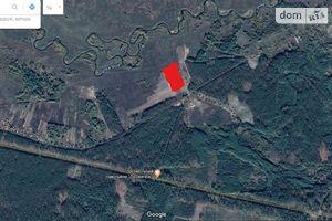 Здається в оренду земельна ділянка 2 соток у Житомирській області