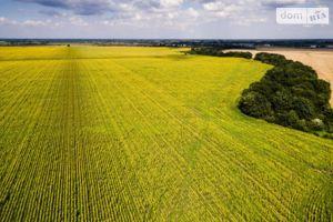 Продается земельный участок 120 соток в Киевской области