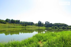Продается земельный участок 8 соток в Винницкой области