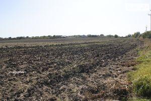 Продается земельный участок 40.07 соток в Хмельницкой области