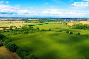 Продается земельный участок 60 соток в Винницкой области