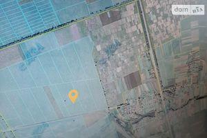 Здається в оренду земельна ділянка 540 соток у Чернігівській області