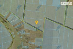 Продается земельный участок 599 соток в Полтавской области