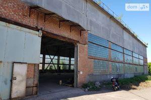 Зніму нерухомість в Миргороді довгостроково