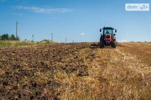 Сдается в аренду земельный участок 250 соток в Херсонской области